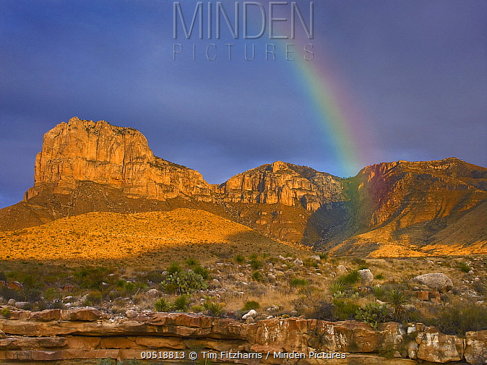 Rainbow near El Capitan, Guadalupe Mountains National Park, Texas  -  Tim Fitzharris