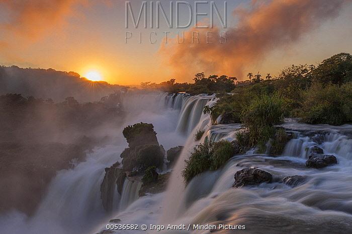 Sunrise at Iguacu Falls, largest waterfalls in the world, Iguacu National Park, Brazil  -  Ingo Arndt