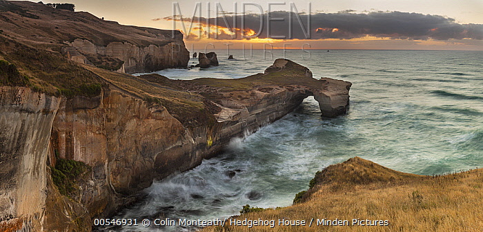 Coastal cliffs, Tunnel Beach, Otago Peninsula, Otago, New Zealand  -  Colin Monteath/ Hedgehog House