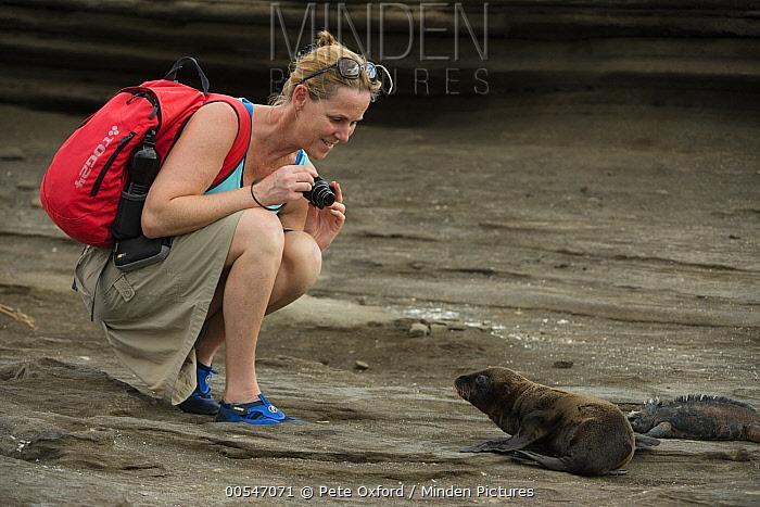Galapagos Sea Lion (Zalophus wollebaeki) pup and tourist, Galapagos Islands, Ecuador  -  Pete Oxford