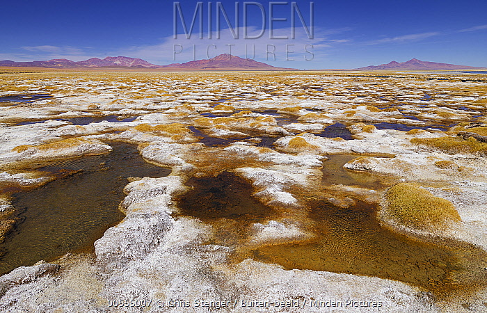 Salt flat, Salar de Tara, San Pedro de Atacama, Chile