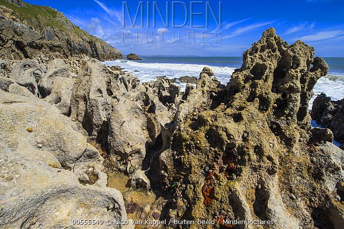 Limestone along coast, Barafundle Bay, Pembrokeshire, Wales, United Kingdom