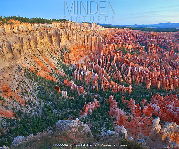 Hoodoos, Inspiration Point, Bryce Canyon National Park, Utah