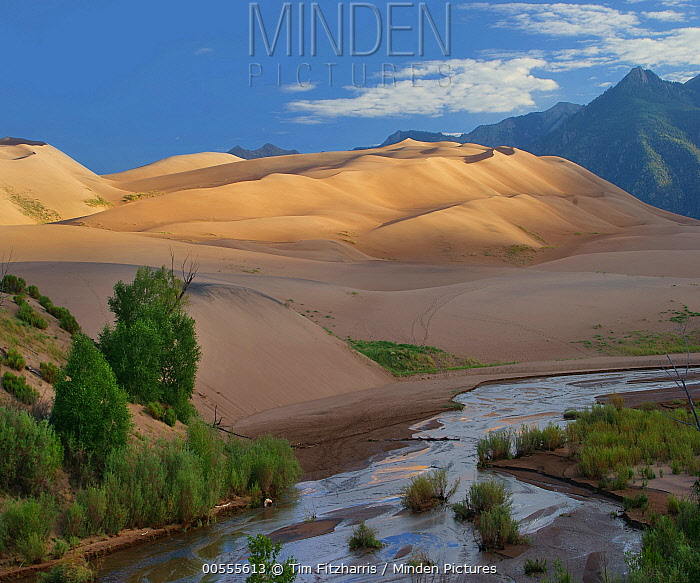 Sand Creek, Great Sand Dunes National Park, Colorado