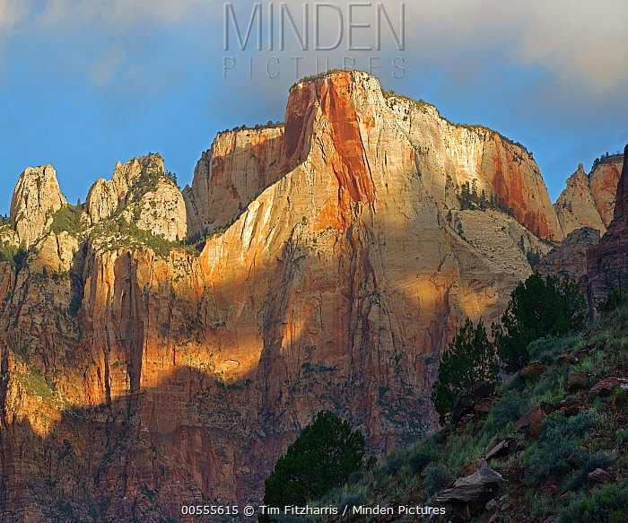 Towers of the Virgin, Zion National Park, Utah