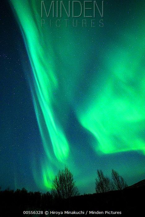 Northern lights, Lofoten Islands, Norway