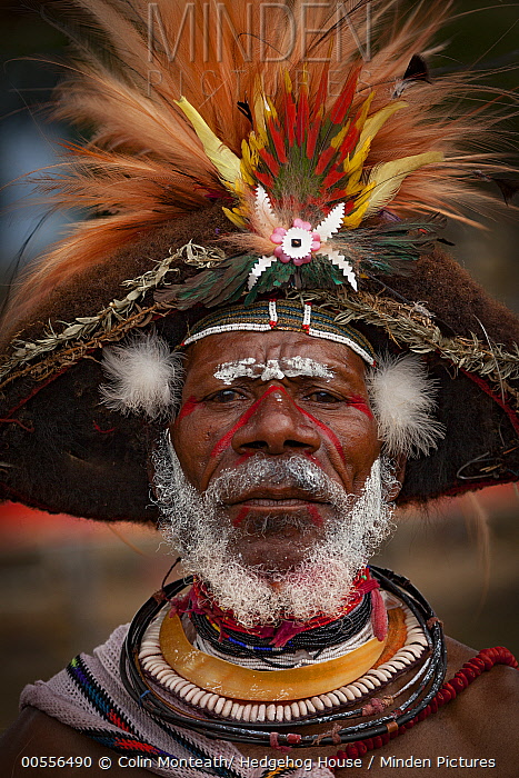 Man in ritual make-up and traditional clothing during a sing-sing, Goroka Show, Goroka, Eastern Highlands, Papua New Guinea