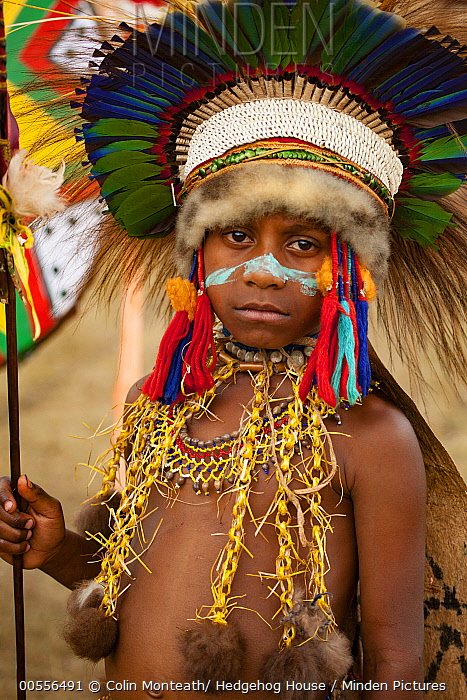 Boy in ritual make-up and traditional clothing during a sing-sing, Goroka Show, Goroka, Eastern Highlands, Papua New Guinea
