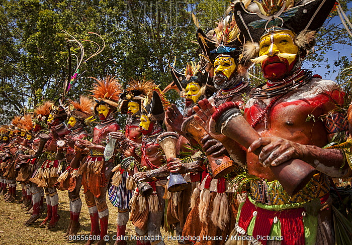 Huli men in ritual make-up and traditional clothing dancing during a sing-sing, Goroka Show, Goroka, Eastern Highlands, Papua New Guinea