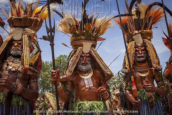 Men in ritual make-up and traditional clothing during a sing-sing, Goroka Show, Goroka, Eastern Highlands, Papua New Guinea