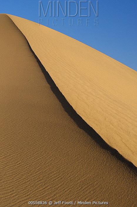 Sand dune, Mesquite Flat Sand Dunes, Death Valley National Park, California