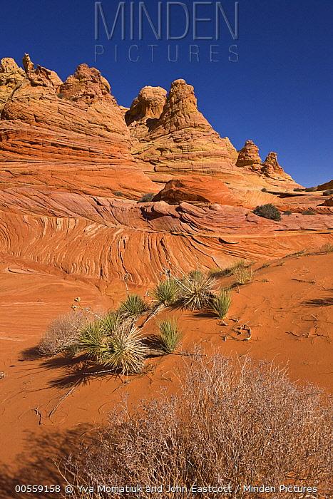 Sandstone rock formations, Vermilion Cliffs National Monument, Colorado Plateau, Utah
