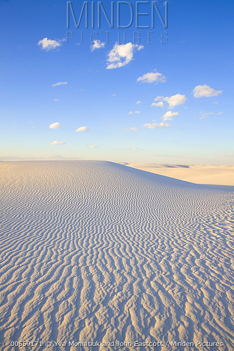 White gypsum sand dunes, White Sands National Monument, New Mexico