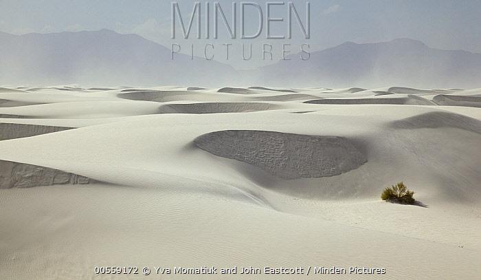White gypsum sand dunes, White Sands National Monument, New Mexico