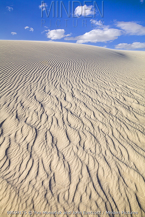 Ripples on white gypsum sand dunes, White Sands National Monument, New Mexico