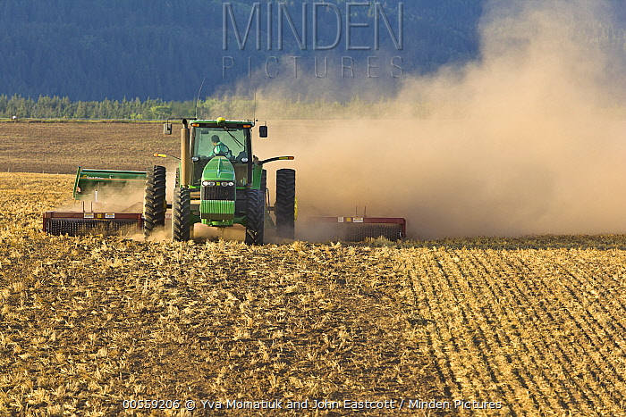 Wheat (Triticum sp) field being plowed, Idaho