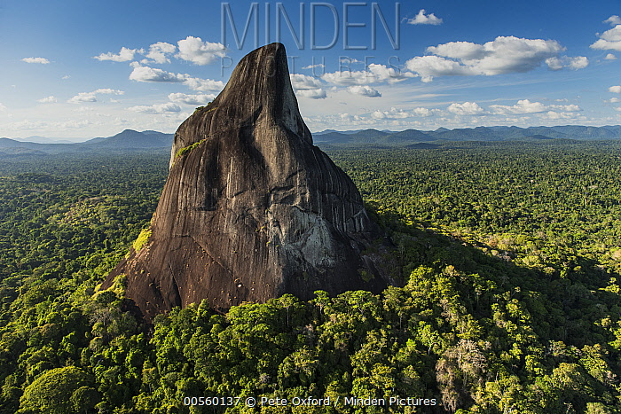Bottle Mountain rising out of rainforest, Rupununi, Guyana
