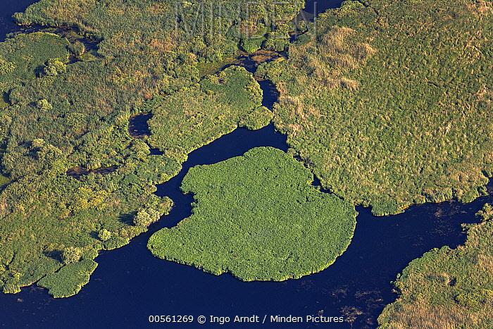 Reed islands, Danube Delta, Romania