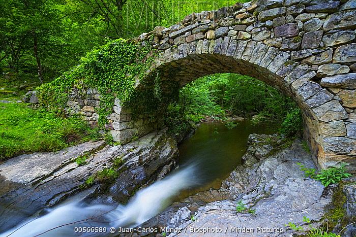 Viana River flowing below bridge, Vega de Pas, Valles Pasiegos, Cantabria, Spain