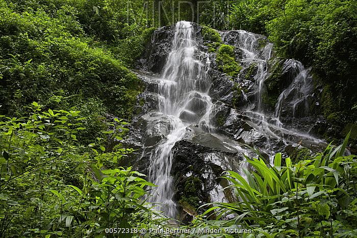 Waterfall in the rainforest, Nyungwe Forest, Rwanda