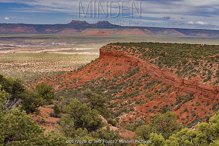 Sandstone cliff and Bears Ears mesas, Valley of the Gods, Bears Ears National Monument, Utah
