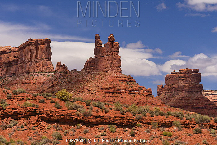 Sandstone rock formations, Valley of the Gods, Bears Ears National Monument, Utah