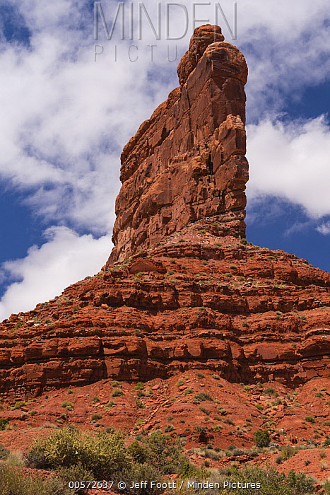 Sandstone rock formation, Valley of the Gods, Bears Ears National Monument, Utah
