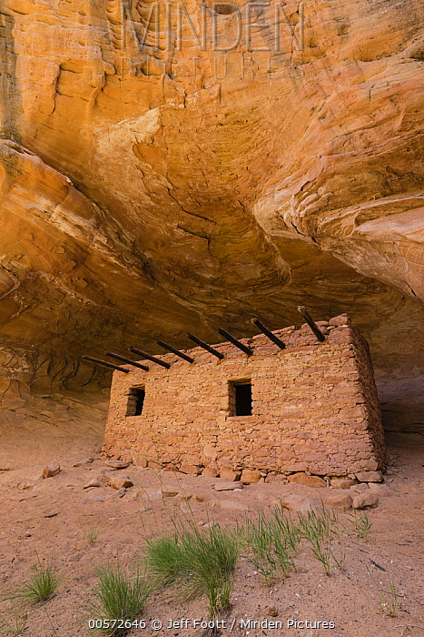 Doll House Ruin, Cedar Mesa, Bears Ears National Monument, Utah