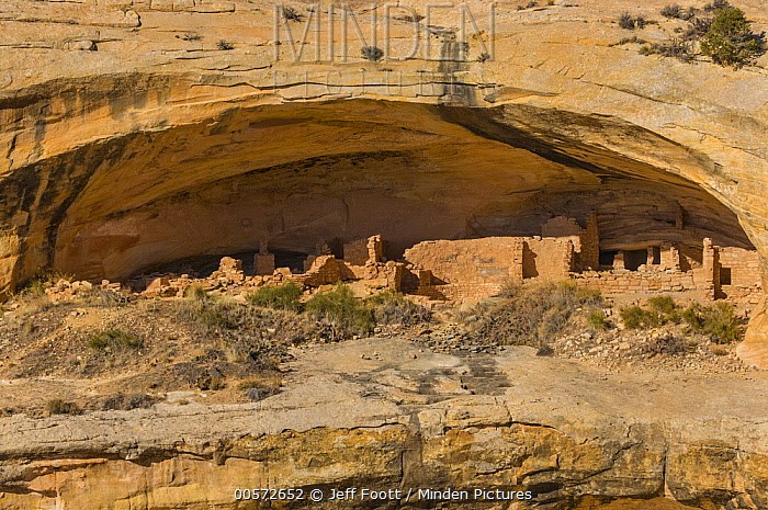 Butler Wash Ruins, which were occupied about 700 years ago, Bears Ears National Monument, Utah