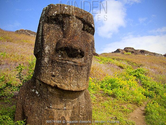 Moai statue, Rano Raraku, Easter Island, Chile
