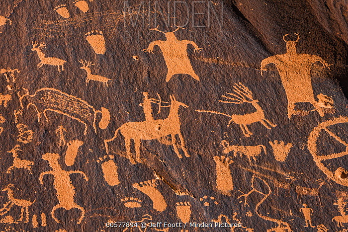 Newspaper Rock, a petroglyph panel of predominantly Ute images, Bears Ears National Monument, Utah
