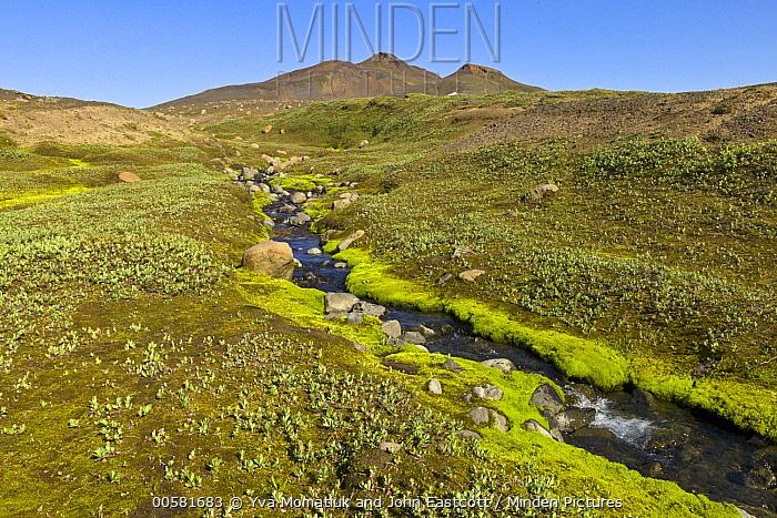 Stream in tundra, Vatnajokull National Park, Iceland