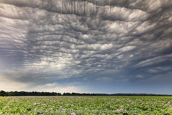 Storm clouds, Netherlands