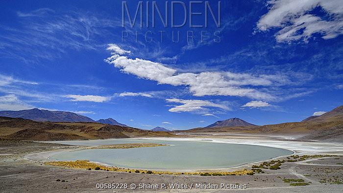 Lake in altiplano, Green Lake, Bolivia