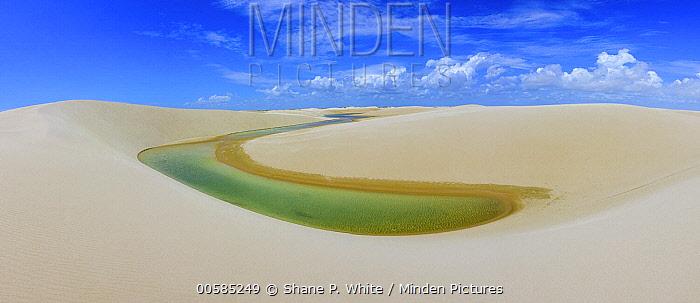 Freshwater lagoon amid sand dunes, Capivara Reservoir, Lencois Maranhenses National Park, Brazil