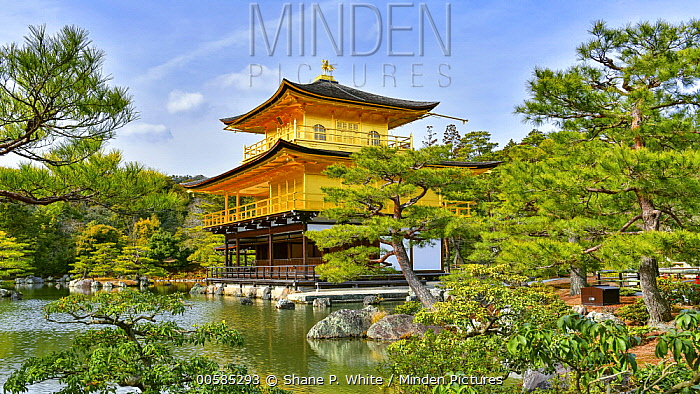 Golden pavilion, Ginkaku-ji, Kyoto, Japan