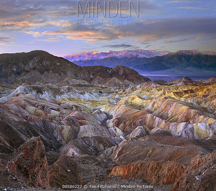 Eroded sandstone, Zabriskie Point, Death Valley National Park, California