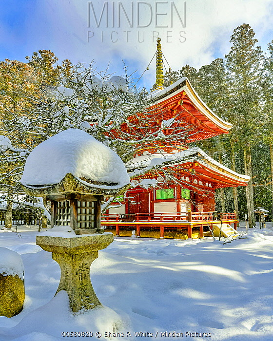 Temple in winter, Danjo Garan, Mount Koya, Japan