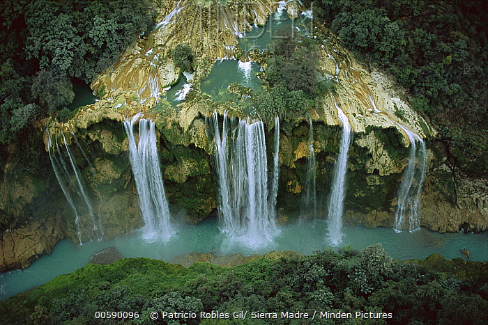 Aerial view of Tamul Waterfall (330 feet high) where Rio Gallinas cascades into the Rio Santa Maria river in the Huasteca Potosina region, Mexico  -  Patricio Robles Gil/ Sierra Madr