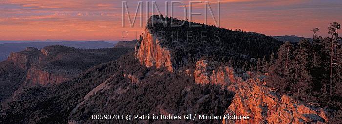 Mountains of Sierra del Carmen tower 5,000 feet over the Chihuahuan Desert floor, Sierra Madre Range, Mexico  -  Patricio Robles Gil/ Sierra Madr
