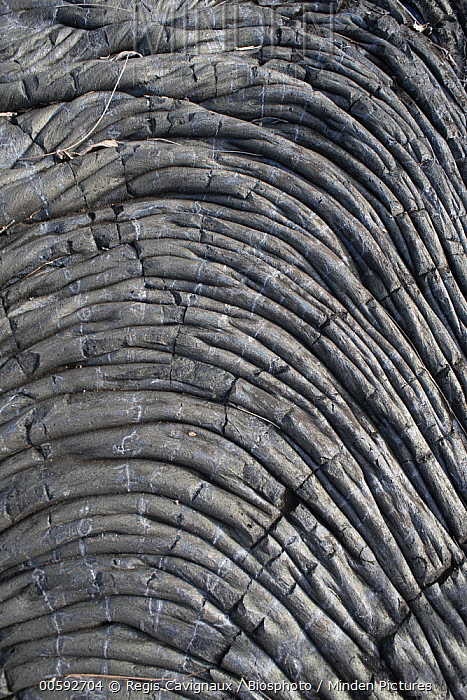 Aa lava cooled in a rippled pattern, Reunion Island, France