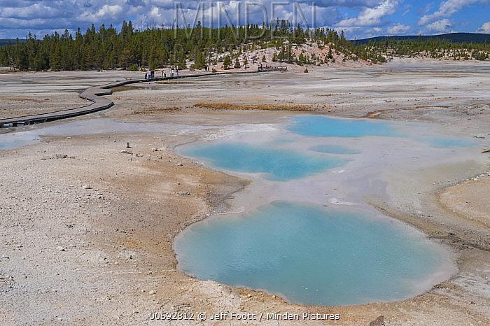 Hot springs, Porcelain Basin, Norris Geyser Basin, Yellowstone National Park, Wyoming