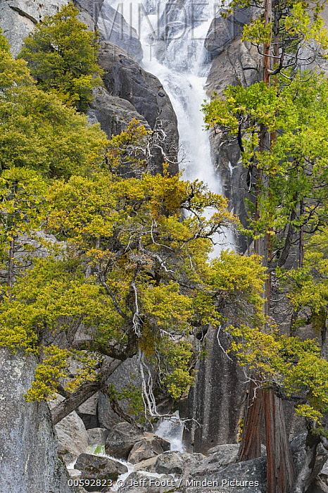 Spring run-off, Cascade Creek, Yosemite National Park, California