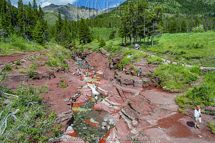 Tourists overcrowding creek, Red Rock Creek, Red Rock Canyon, Waterton Lakes National Park, Alberta, Canada