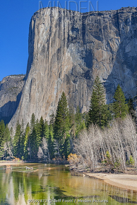 El Capitan and Merced River, Yosemite National Park, California