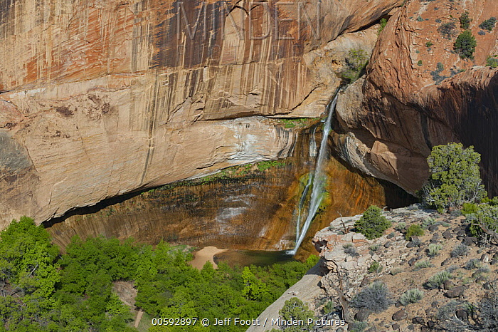 Calf Creek Falls, Grand Staircase-Escalante National Monument, Utah