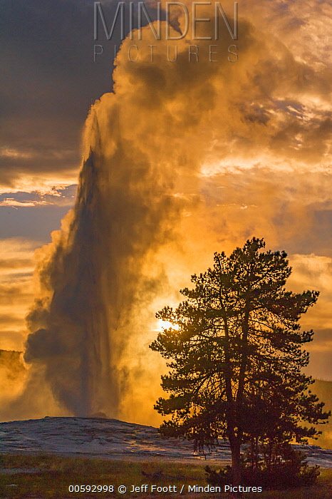 Geyser spouting, Old Faithful, Yellowstone National Park, Wyoming