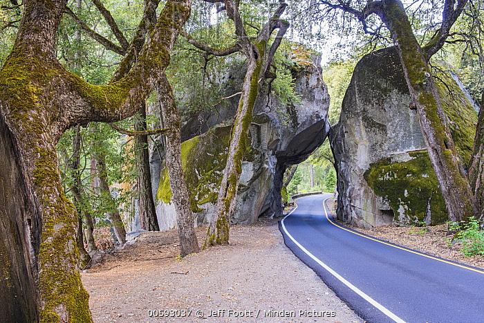Road passing through boulder, Yosemite National Park, California