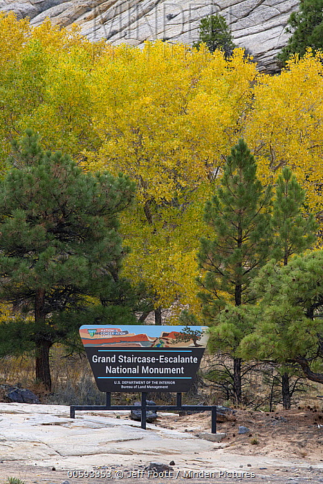 Entrance sign in autumn, Grand Staircase-Escalante National Monument, Utah