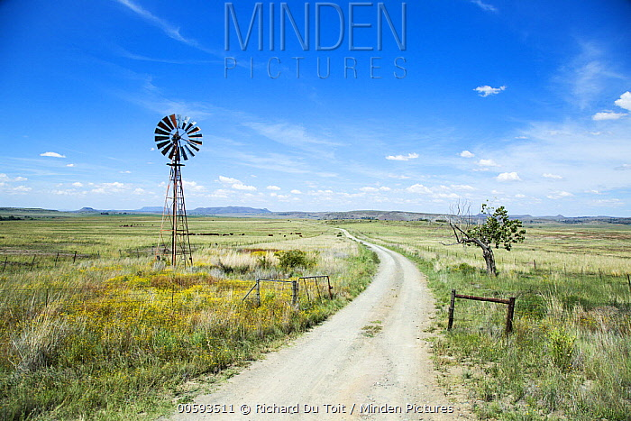 Windmill and pastures, Eastern Cape, South Africa